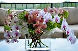 decoration florale ideale lorchidee chez vous With chambre bébé design avec bouquet de fleurs eternelle