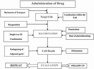 8 Flow Chart Of Drug Administration