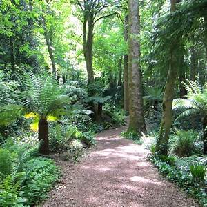 Farn Im Garten : reisetipp irland blarney castle and gardens bei cork ~ Orissabook.com Haus und Dekorationen