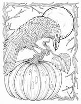 Coloring Pages Crow Digital Fall Adult Harvest Thanksgiving Pumpkin Autumn Sheets Crows Etsy Printable Adults Colouring Realistic American Books Sunflower sketch template
