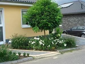 Baum Vorgarten Immergrün : garten eure ideen mein sch ner garten forum ~ Michelbontemps.com Haus und Dekorationen