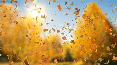 autumn fall leaves sideways realistic falling leaves