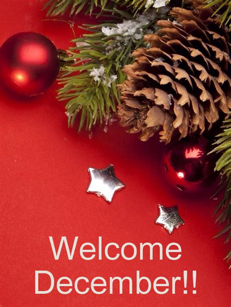 december  pics  wallpapers snipping world