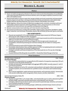 Professional resumes more than 500 cv resume examples for Best it resume writers