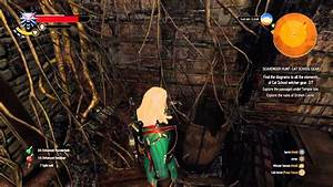 The Witcher 3  Wild Hunt Diagram Feline Steel Sword Level