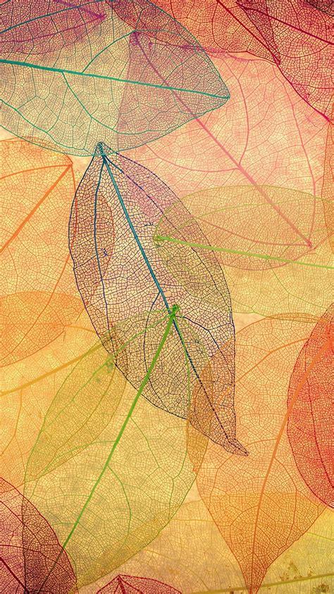 Fonds d'écran de l'automne pour téléphones et pc ! Wallpapers of the week: autumn