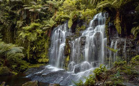 วอลเปเปอร์ : น้ำตก, ธรรมชาติสำรอง, เนื้อน้ำ, พืชพันธุ์ ...