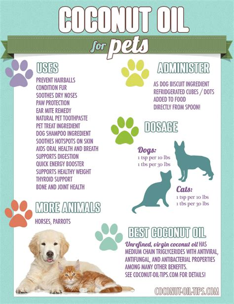 coconut oil  pets  benefits  tips coconut