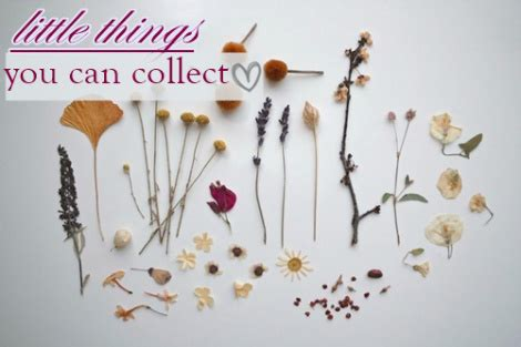 small things to collect 20 little things you can collect creativelu