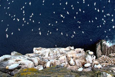 Winning wildlife photos capture the UK's amazing natural world