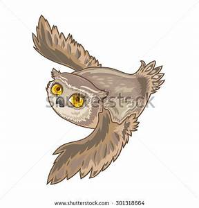 Owl Flying Stock Photos, Images, & Pictures | Shutterstock
