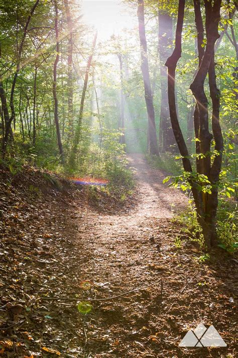 Trail etiquette: how to yield stay safe & have fun