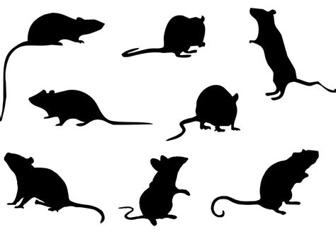 mice silhouette vector    vectors