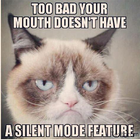 Grumpy Cat Meme - 25 very funny grumpy cat meme pictures and photos
