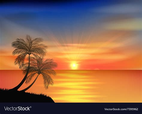 sunset background  beach  palm tree vector image