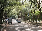 File:Rice University - Arboretum.JPG - Wikipedia