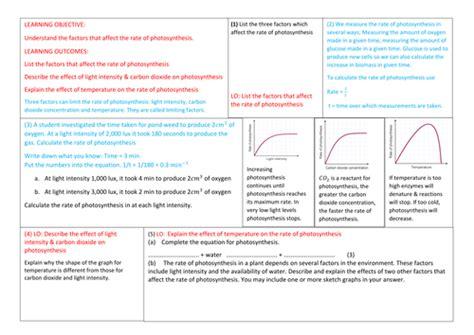gcse limiting factors photosynthesis gcse new spec 1 9