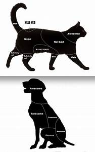 A Petting Chart For Cats And Dogs