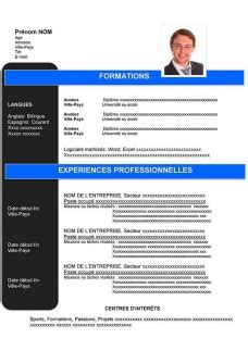Cv Exemple Gratuit by Zazizou