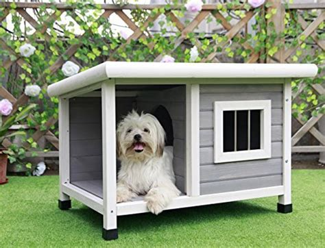 outdoor dog houses   pet life today