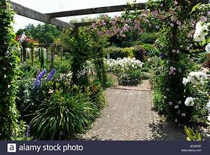 English Garden with roses on a pergola in Somerset Stock