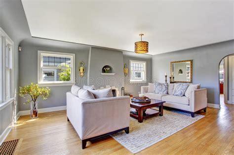 light gray living room light grey living room with white sofas stock photo 18733