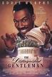 The Distinguished Gentleman movie review (1992) | Roger Ebert
