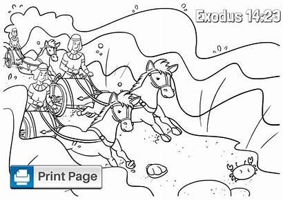 Moses Coloring Sea Israelites Bible Chariots Exodus