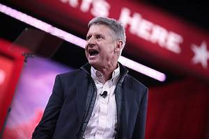 Brian Doherty: Libertarian Gary Johnson Clarifies Foreign ...