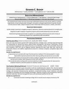 executive manager resume sample monstercom With executive manager resume
