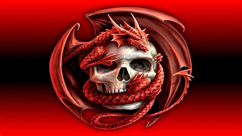 red dragon wallpaper  pictures