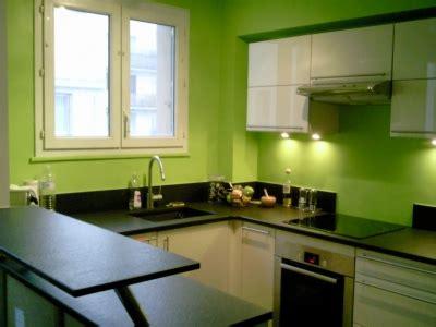 cuisine peinte en vert décoration cuisine verte