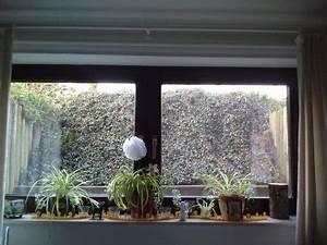 Einen Grünen Daumen Haben : schlafzimmer 39 my tiny little something 39 mein kellerzimmer philarie zimmerschau ~ Markanthonyermac.com Haus und Dekorationen