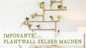 Pflanzenwand Selber Bauen : imposante pflanzenwand selber bauen youtube ~ Sanjose-hotels-ca.com Haus und Dekorationen