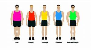 There are only five male body shapes, according to health ...