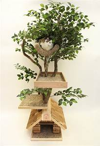 The Box House: A Cat Tree I Wouldn't Be Embarrassed to