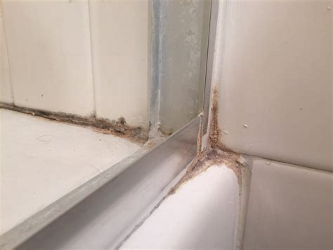 shower caulk  silicone removal  grout store