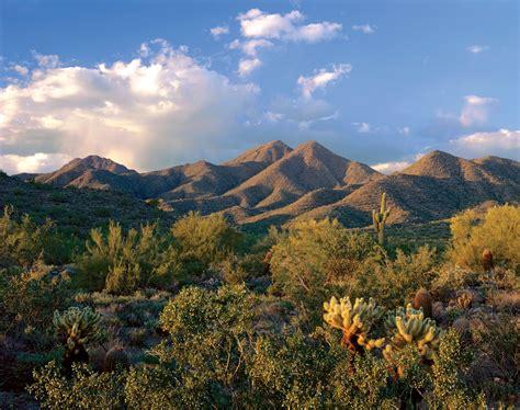 az bureau how to spend a week in arizona part ii scottsdale huffpost