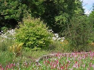 Plantes Vivaces Autour D Un Bassin : r alisation de massifs arbustifs et de plantes vivaces projardins ~ Melissatoandfro.com Idées de Décoration