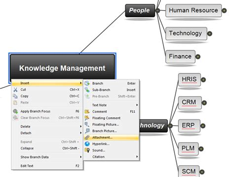 knowledge management software mindview  software
