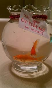 577 best images about Fish Bowl on Pinterest | Cool fish ...