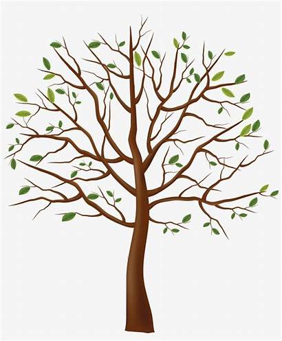 Tree Trunk Clipart Nicepng