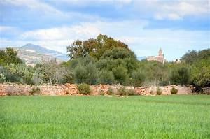 Immobilien Auf Mallorca Kaufen : mallorca immobilien grundst ck kaufen lucie hauri ~ Michelbontemps.com Haus und Dekorationen