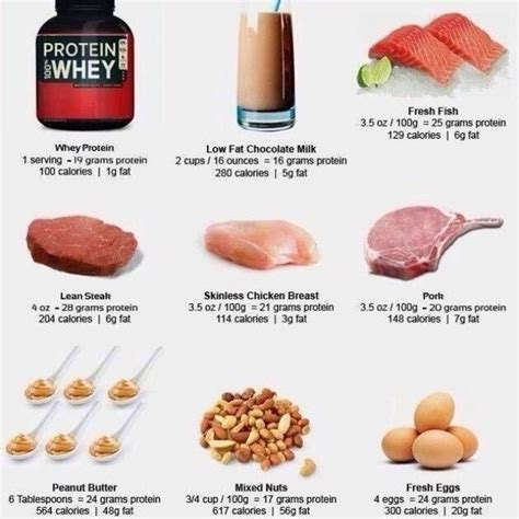 foods protein muscle grams 150 powder food building body rich healthy eating much per many meal build gain sources whey