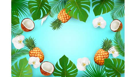summer tropical background  exot illustrations