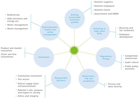 materiality  stakeholder engagement deloitte impact