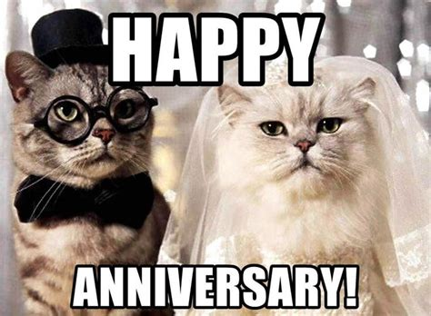 Submitted 2 days ago by sebastian_rhodes. Wedding Anniversary Meme For Wife, Husband and Loved Ones ...