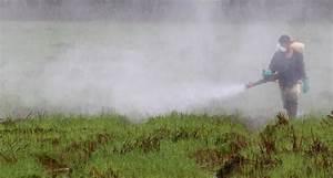 Unkrautvernichtungsmittel Für Wege : glyphosat das ber hmteste pestizid der welt online ~ Michelbontemps.com Haus und Dekorationen