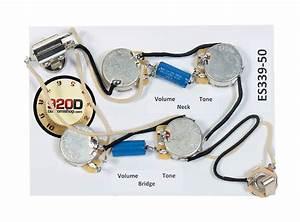 920d Custom Es339  Epiphone