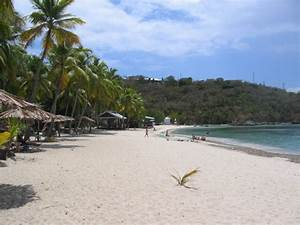 resort coming to water island usvi resorts daily With honeymoon beach water island